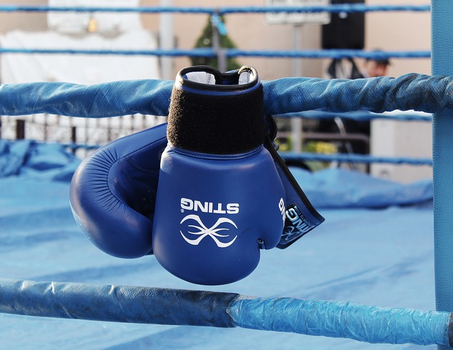 boxing-2822129_640